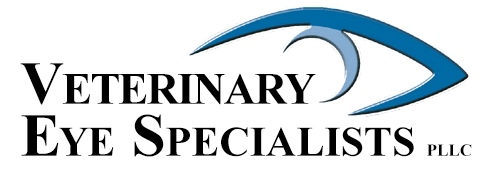 Veterinary Eye Specialists PLLC